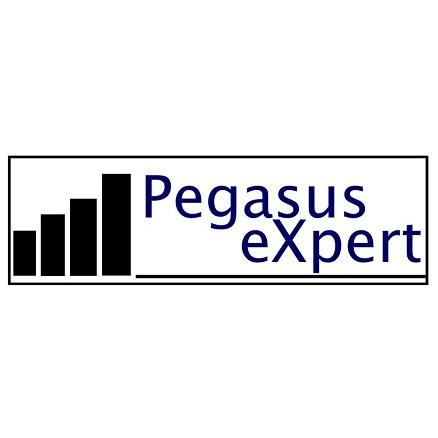 Pegasus Expert Logo