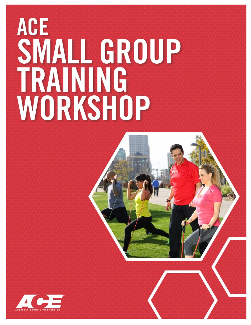 ACE Small Group Training Workshop cover